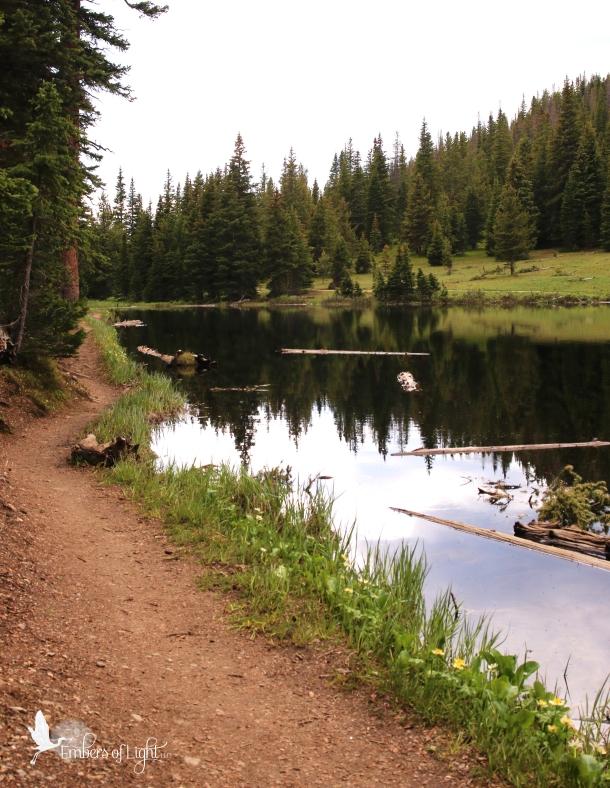 trail, pond
