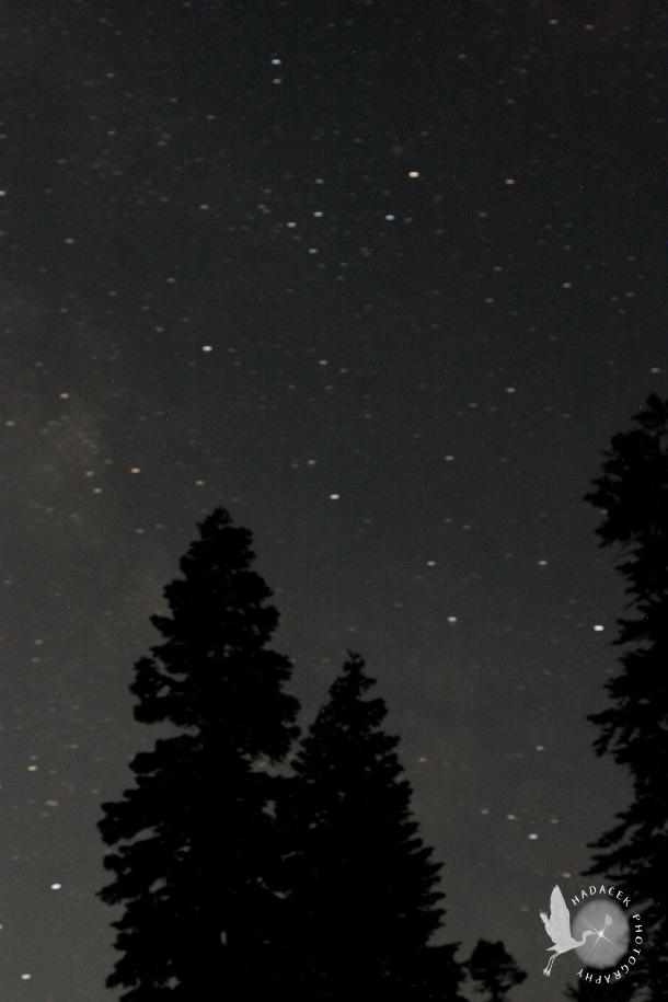 orbs; night