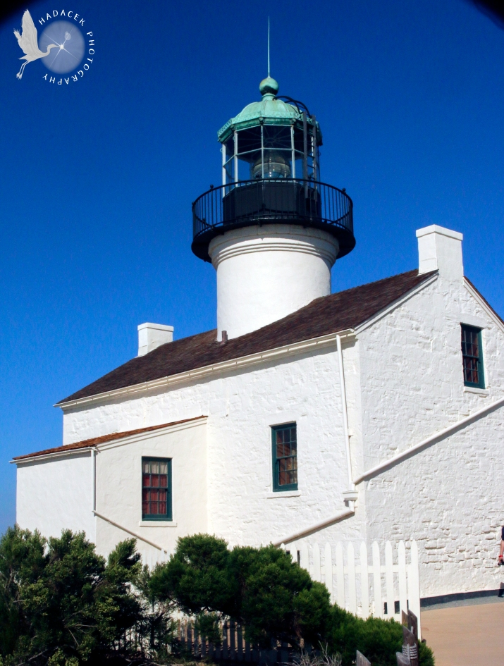 Lighthouse 1 CW